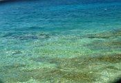colours in the sea